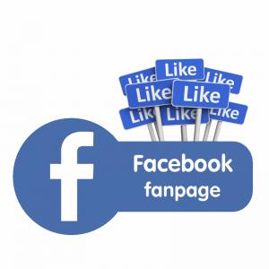 mua like fanpage facebook Việt Nam giá rẻ