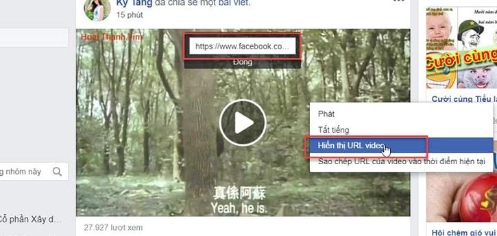 tai-hang-loat-video-tren-facebook-cung-luc-ve-may-tinh (8)